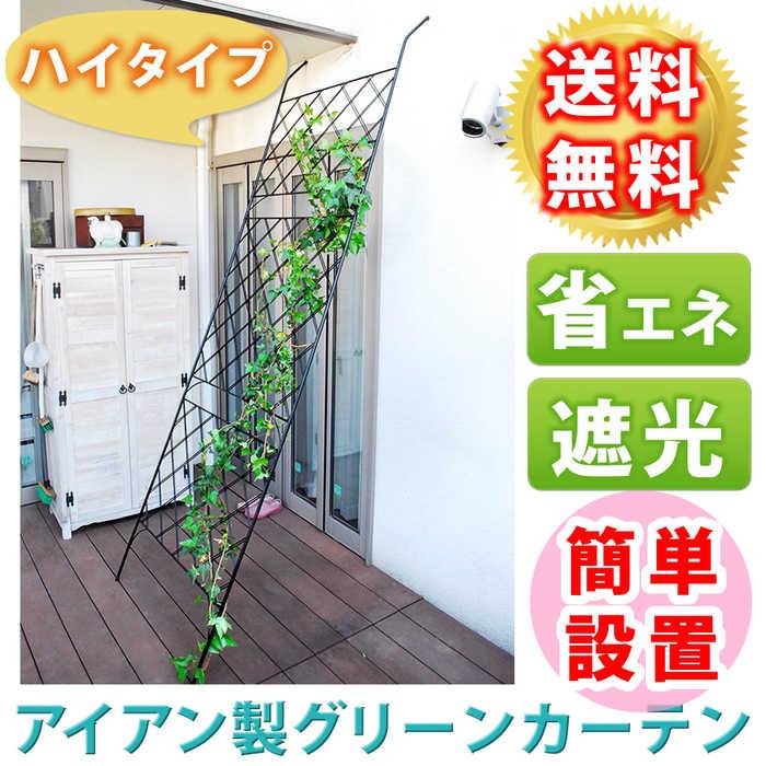 アイアン製グリーンカーテン